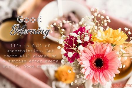 Best Good Morning Flowers Greeting Cards Images