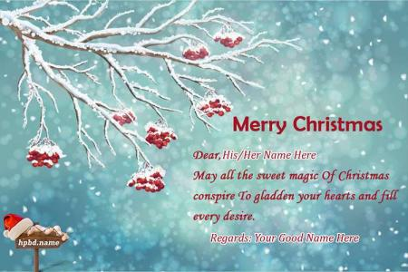 Wish a Merry Christmas Card With Name Edit