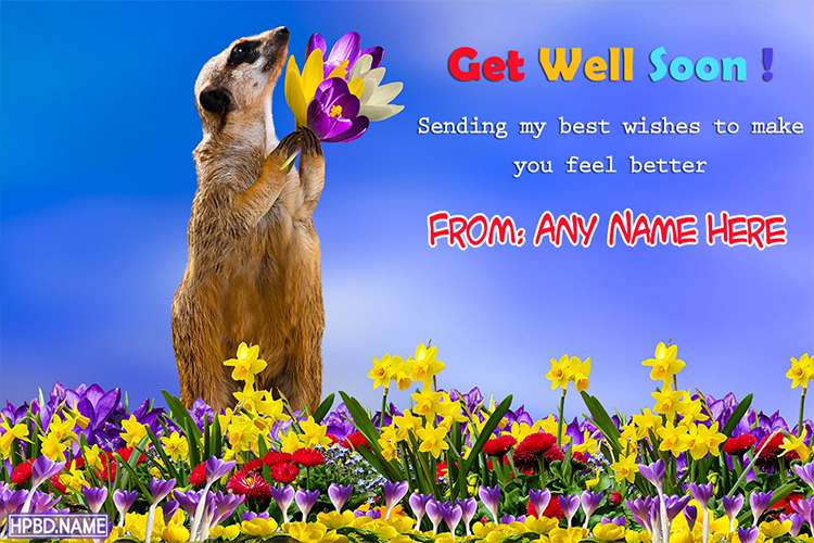 Funny Get Well Soon Wishes Cards With Name Edit